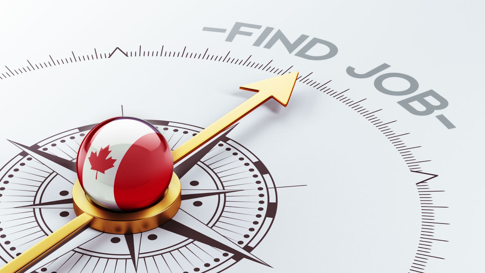 Building Your Resume for Success in the Canadian Job Market